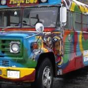 Secrett Mystery Bus
